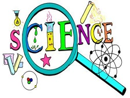Year 2 Science Show - Wednesday 20 February